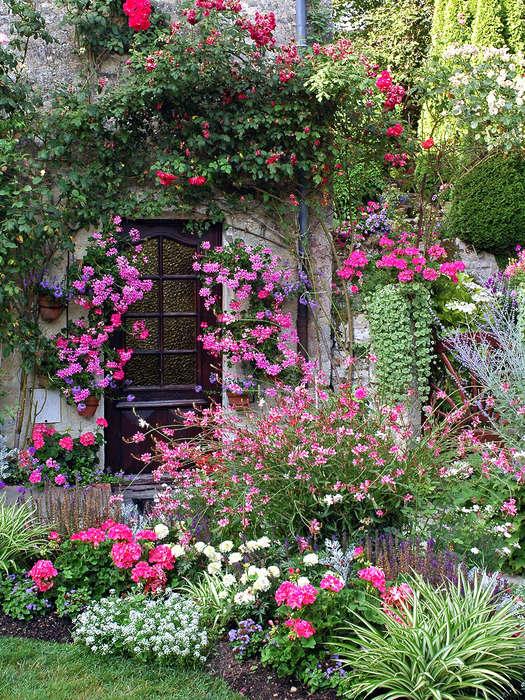 Bloemrijke tuinaanleg