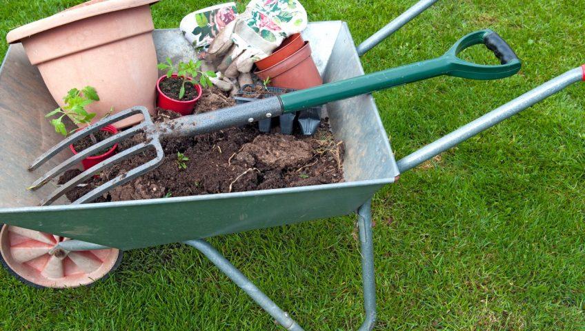 hovenier inschakelen voor het aanleggen van een tuin